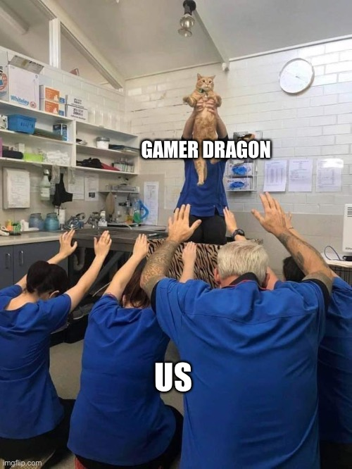 All Hail The Cat |  GAMER DRAGON; US | image tagged in all hail the cat | made w/ Imgflip meme maker
