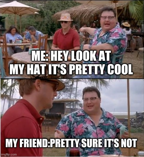 See Nobody Cares Meme |  ME: HEY LOOK AT MY HAT IT'S PRETTY COOL; MY FRIEND:PRETTY SURE IT'S NOT | image tagged in memes,see nobody cares | made w/ Imgflip meme maker