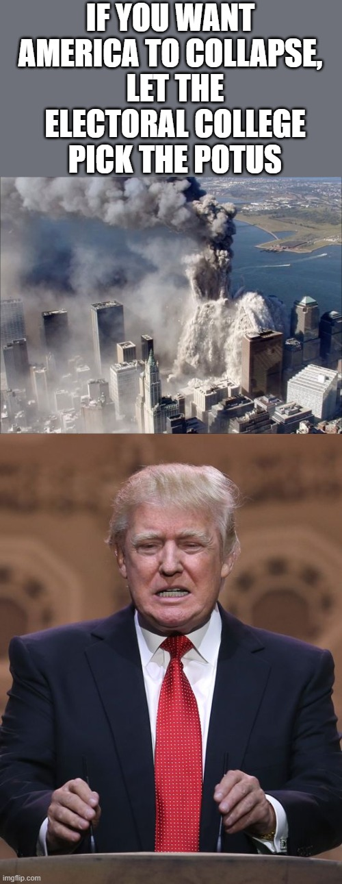 Bush and Trump, biggest collapses in the economy ever in our history, lesson learned? | IF YOU WANT AMERICA TO COLLAPSE, LET THE ELECTORAL COLLEGE PICK THE POTUS | image tagged in donald trump,wtc collapse,maga,politics,donald trump is an idiot | made w/ Imgflip meme maker