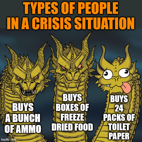 Spending all your money on things that can't feed or protect you.... Genius level of prepping |  TYPES OF PEOPLE IN A CRISIS SITUATION; BUYS 24 PACKS OF TOILET PAPER; BUYS BOXES OF FREEZE DRIED FOOD; BUYS A BUNCH OF AMMO | image tagged in three-headed dragon,dumb people,crisis,prepare yourself | made w/ Imgflip meme maker