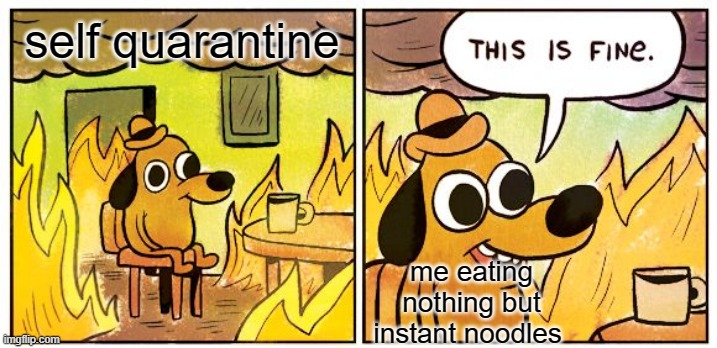 This Is Fine |  self quarantine; me eating nothing but instant noodles | image tagged in memes,this is fine | made w/ Imgflip meme maker