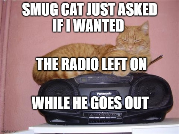 Smug Cat |  SMUG CAT JUST ASKED IF I WANTED; THE RADIO LEFT ON; WHILE HE GOES OUT | image tagged in cat radio,coronavirus,self isolation | made w/ Imgflip meme maker