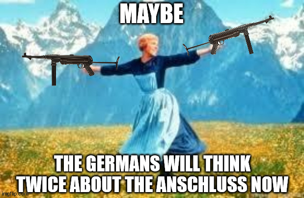 Look At All These | MAYBE THE GERMANS WILL THINK TWICE ABOUT THE ANSCHLUSS NOW | image tagged in memes,look at all these,wwii,austria | made w/ Imgflip meme maker