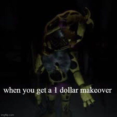 when you get a 1 dollar makeover | | image tagged in funny,demotivationals | made w/ Imgflip demotivational maker