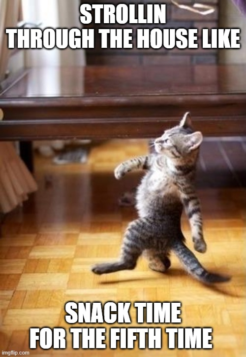 Cool Cat Stroll |  STROLLIN THROUGH THE HOUSE LIKE; SNACK TIME FOR THE FIFTH TIME | image tagged in memes,cool cat stroll | made w/ Imgflip meme maker
