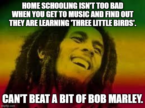 Bob Marley |  HOME SCHOOLING ISN'T TOO BAD WHEN YOU GET TO MUSIC AND FIND OUT THEY ARE LEARNING 'THREE LITTLE BIRDS'. CAN'T BEAT A BIT OF BOB MARLEY. | image tagged in bob marley | made w/ Imgflip meme maker