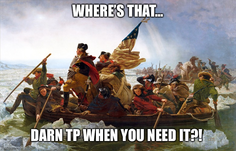 george washington | WHERE'S THAT... DARN TP WHEN YOU NEED IT?! | image tagged in george washington | made w/ Imgflip meme maker
