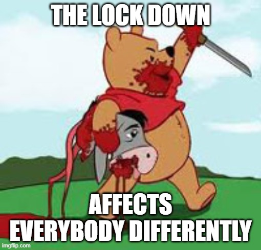 THE LOCK DOWN; AFFECTS EVERYBODY DIFFERENTLY | image tagged in lockdown,memes,funny,coronavirus,evil,winnie the pooh | made w/ Imgflip meme maker