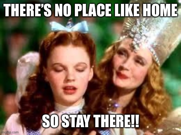wizard of oz | THERE'S NO PLACE LIKE HOME SO STAY THERE!! | image tagged in wizard of oz | made w/ Imgflip meme maker
