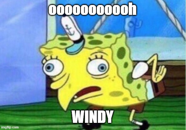 ooooooooooh WINDY | image tagged in memes,mocking spongebob | made w/ Imgflip meme maker