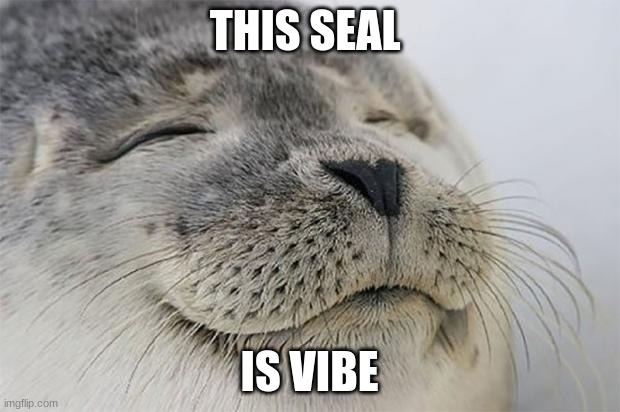 Satisfied Seal |  THIS SEAL; IS VIBE | image tagged in memes,satisfied seal | made w/ Imgflip meme maker