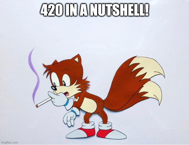 420 IN A NUTSHELL! | image tagged in dank tails | made w/ Imgflip meme maker