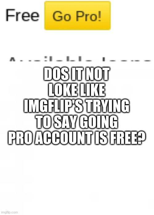 no, realy |  DOS IT NOT LOKE LIKE IMGFLIP'S TRYING TO SAY GOING PRO ACCOUNT IS FREE? | image tagged in imgflip | made w/ Imgflip meme maker