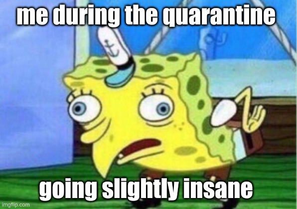 Mocking Spongebob |  me during the quarantine; going slightly insane | image tagged in memes,mocking spongebob | made w/ Imgflip meme maker