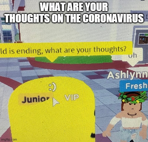 The word is ending, what are your thoughts? |  WHAT ARE YOUR THOUGHTS ON THE CORONAVIRUS | image tagged in the word is ending what are your thoughts | made w/ Imgflip meme maker