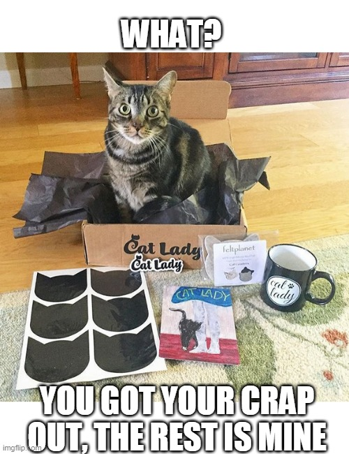 CAT IN THE BOX |  WHAT? YOU GOT YOUR CRAP OUT, THE REST IS MINE | image tagged in cats,funny cats,cat in a box | made w/ Imgflip meme maker