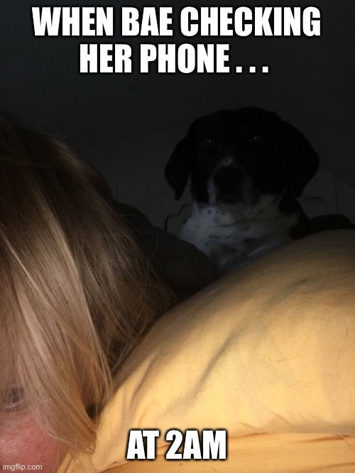 WHEN BAE CHECKING HER PHONE . . . AT 2AM | image tagged in bae,shady,trust | made w/ Imgflip meme maker