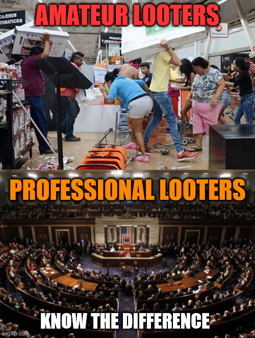 The real criminals are in Government. |  AMATEUR LOOTERS; PROFESSIONAL LOOTERS; KNOW THE DIFFERENCE | image tagged in congress,looters | made w/ Imgflip meme maker