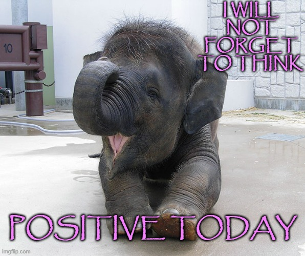 Think Positive |  I WILL NOT FORGET TO THINK; POSITIVE TODAY | image tagged in affirmation,positive thinking,think positive | made w/ Imgflip meme maker