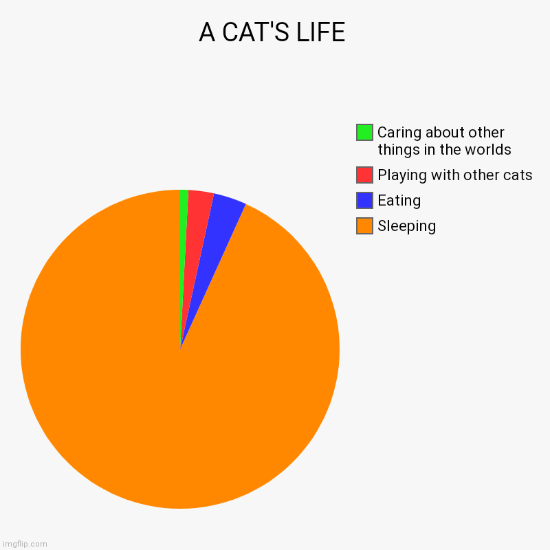 A CAT'S LIFE | Sleeping, Eating, Playing with other cats, Caring about other things in the worlds | image tagged in charts,pie charts | made w/ Imgflip chart maker
