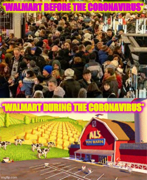 walmart changes | *WALMART BEFORE THE CORONAVIRUS* *WALMART DURING THE CORONAVIRUS* | image tagged in coronavirus,walmart,crowd of people,empty,comparison,coronavirus meme | made w/ Imgflip meme maker