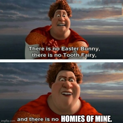 No homies |  HOMIES OF MINE. | image tagged in tighten megamind there is no easter bunny,homies,homie,megamind,funny,memes | made w/ Imgflip meme maker