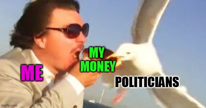 Always swooping in to take a big chunk of my check | ME MY  MONEY POLITICIANS | image tagged in swiping seagull,politicians | made w/ Imgflip meme maker