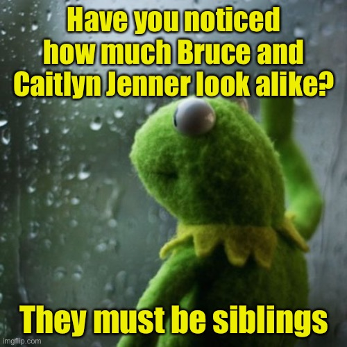 sometimes I wonder  |  Have you noticed how much Bruce and Caitlyn Jenner look alike? They must be siblings | image tagged in sometimes i wonder | made w/ Imgflip meme maker