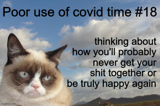 corona grumpy |  Poor use of covid time #18; thinking about how you'll probably never get your shit together or be truly happy again | image tagged in grumpy cat,coronavirus,loser,depressed,procrastination | made w/ Imgflip meme maker