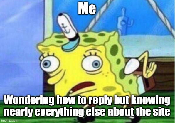 Mocking Spongebob Meme | Me Wondering how to reply but knowing nearly everything else about the site | image tagged in memes,mocking spongebob | made w/ Imgflip meme maker