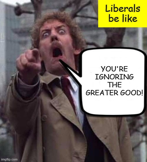 Invasion of The Body Snatchers Donald Sutherland  | Liberals be like YOU'RE IGNORING THE GREATER GOOD! | image tagged in invasion of the body snatchers donald sutherland | made w/ Imgflip meme maker