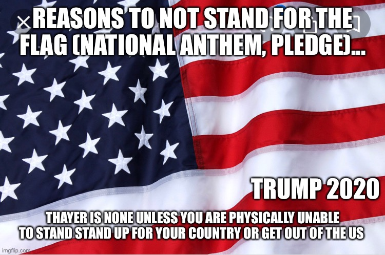 REASONS TO NOT STAND FOR THE FLAG (NATIONAL ANTHEM, PLEDGE)... TRUMP 2020; THAYER IS NONE UNLESS YOU ARE PHYSICALLY UNABLE TO STAND STAND UP FOR YOUR COUNTRY OR GET OUT OF THE US | image tagged in donald trump,trump 2020,america,american flag | made w/ Imgflip meme maker