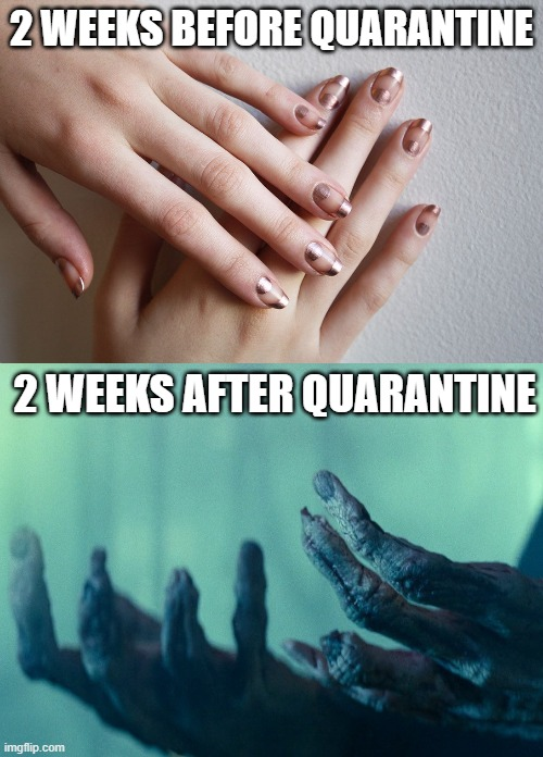 Palpy Hands |  2 WEEKS BEFORE QUARANTINE; 2 WEEKS AFTER QUARANTINE | image tagged in before and after,corona virus,quarantine,coronavirus meme | made w/ Imgflip meme maker