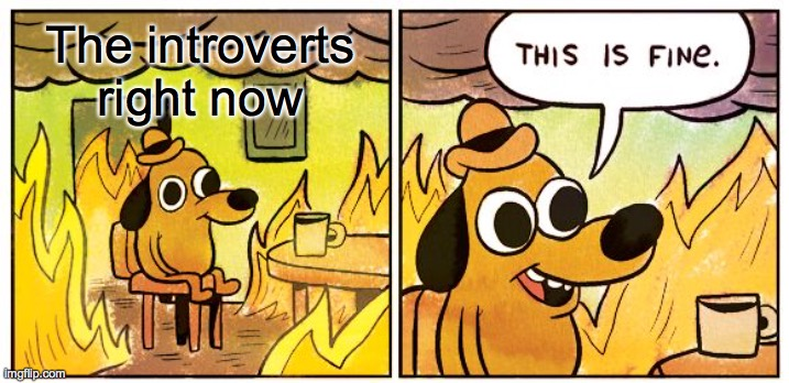 This Is Fine |  The introverts right now | image tagged in memes,this is fine | made w/ Imgflip meme maker
