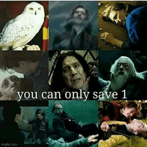 Who'd you save? | image tagged in harry potter,stop reading the tags | made w/ Imgflip meme maker
