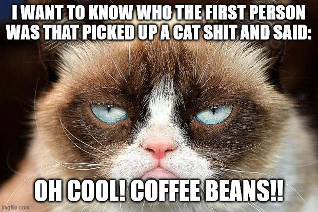 Grumpy Cat Not Amused |  I WANT TO KNOW WHO THE FIRST PERSON WAS THAT PICKED UP A CAT SHIT AND SAID:; OH COOL! COFFEE BEANS!! | image tagged in memes,grumpy cat not amused,grumpy cat | made w/ Imgflip meme maker