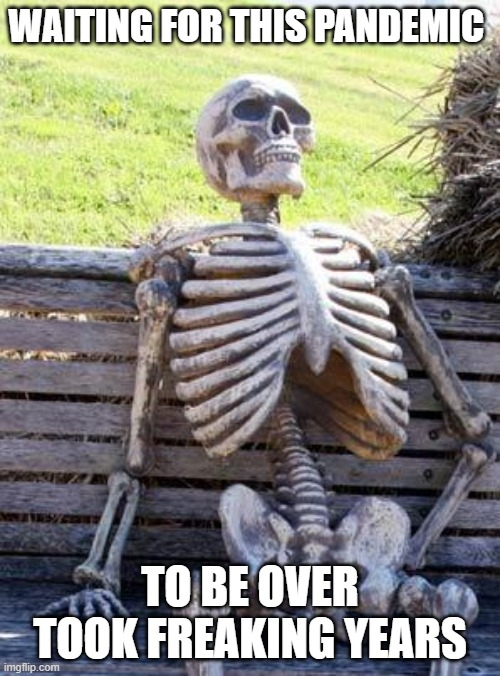 Waiting Skeleton |  WAITING FOR THIS PANDEMIC; TO BE OVER TOOK FREAKING YEARS | image tagged in memes,waiting skeleton | made w/ Imgflip meme maker