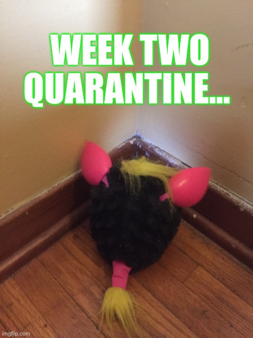 Week two quarantine |  WEEK TWO QUARANTINE... | image tagged in quarantine,toys,funny | made w/ Imgflip meme maker