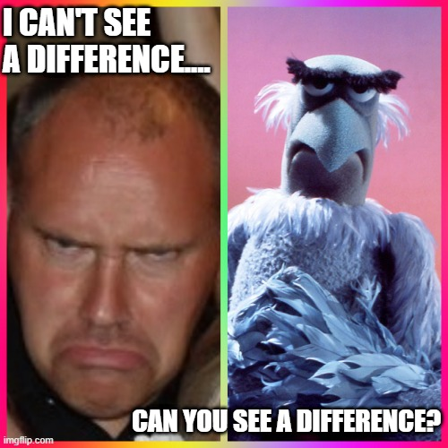 I CAN'T SEE A DIFFERENCE.... CAN YOU SEE A DIFFERENCE? | image tagged in grumpy,ugly twins,twins,eyebrows,eagle,sesame street | made w/ Imgflip meme maker