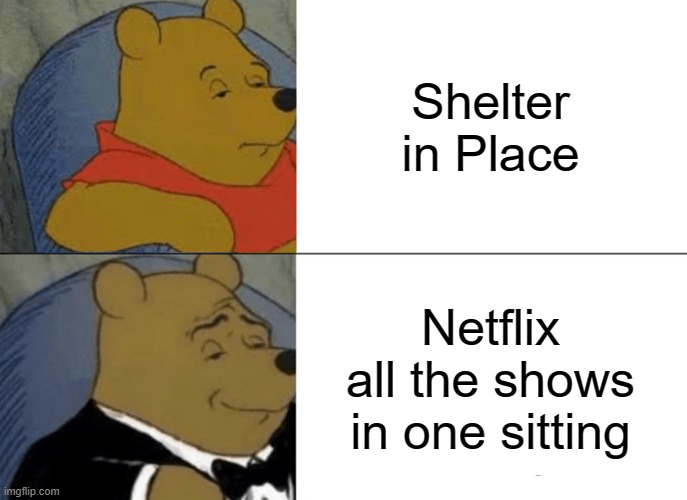 You know it's what you're doing | Shelter in Place Netflix all the shows in one sitting | image tagged in memes,tuxedo winnie the pooh,netflix,shelter in place | made w/ Imgflip meme maker