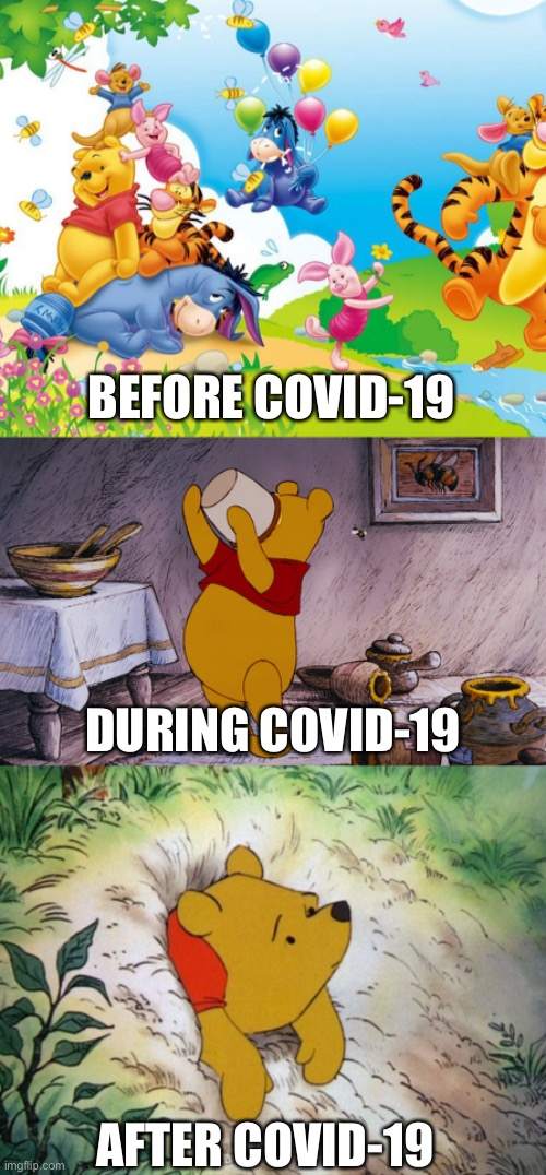 Stages of COVID-19 |  BEFORE COVID-19; DURING COVID-19; AFTER COVID-19 | image tagged in pooh,covid19 | made w/ Imgflip meme maker