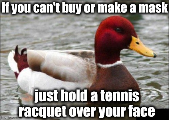 Malicious Advice Mallard |  If you can't buy or make a mask; just hold a tennis racquet over your face | image tagged in memes,malicious advice mallard | made w/ Imgflip meme maker