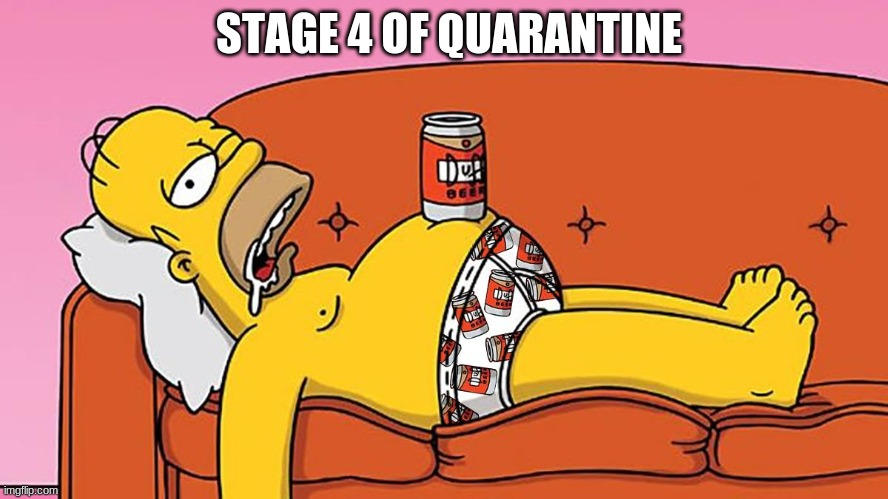 Stage 4 | STAGE 4 OF QUARANTINE | image tagged in coronavirus,pandemic,homer simpson,quarantine,beer,drunk | made w/ Imgflip meme maker
