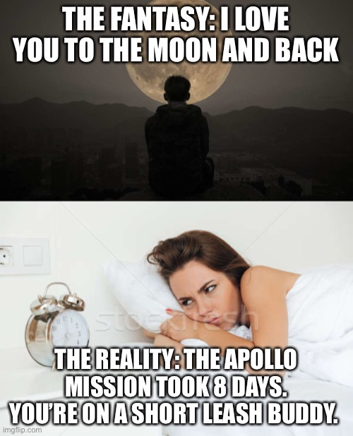 Sentimental Quotes Explained | THE FANTASY: I LOVE YOU TO THE MOON AND BACK THE REALITY: THE APOLLO MISSION TOOK 8 DAYS. YOU'RE ON A SHORT LEASH BUDDY. | image tagged in inspirational quote,famous quotes,expectation vs reality,sarcasm | made w/ Imgflip meme maker