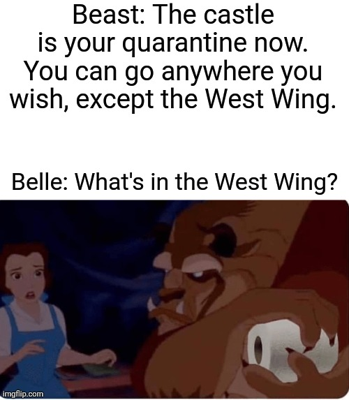 Beast: The castle is your quarantine now. You can go anywhere you wish, except the West Wing. Belle: What's in the West Wing? | image tagged in memes,coronavirus,covid-19,toilet paper,beauty and the beast | made w/ Imgflip meme maker