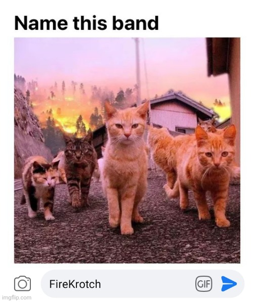 Curtains Drapes Carpets whatever | image tagged in hair,cats,bands,fire | made w/ Imgflip meme maker