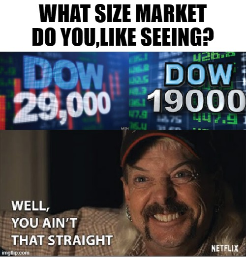 You ain't that straight |  WHAT SIZE MARKET DO YOU,LIKE SEEING? | image tagged in joe exotic,stock market,funny memes,tiger king,netflix | made w/ Imgflip meme maker
