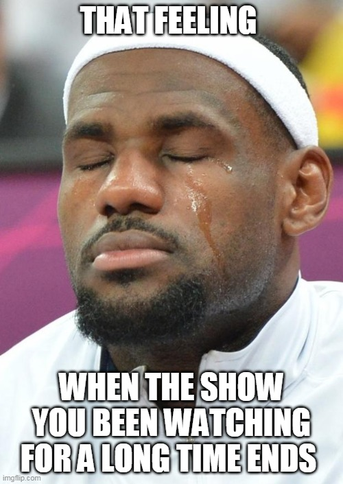 lebron james crying |  THAT FEELING; WHEN THE SHOW YOU BEEN WATCHING FOR A LONG TIME ENDS | image tagged in lebron james crying,memes,sad | made w/ Imgflip meme maker