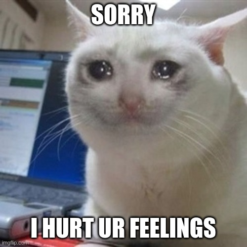 SORRY I HURT UR FEELINGS | image tagged in crying cat | made w/ Imgflip meme maker