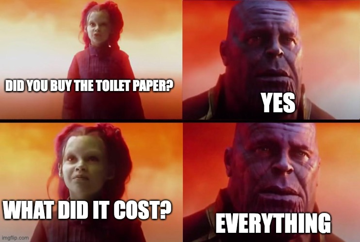 thanos what did it cost |  YES; DID YOU BUY THE TOILET PAPER? WHAT DID IT COST? EVERYTHING | image tagged in thanos what did it cost | made w/ Imgflip meme maker